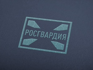 Нижегородские росгвардейцы усмирили дебоширов в гостинице и баре