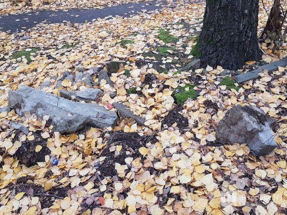 Недоблагоустройство: нижегородцы продолжают жаловаться на мусор в парке Пушкина - фото 12