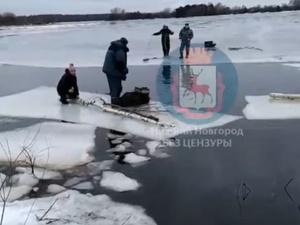 Нижегородские рыбаки спасли девочку с дрейфующей льдины