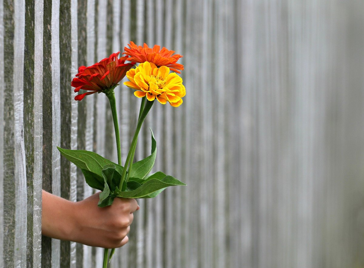 Не дарите эти вещи любимому человеку в День святого Валентина  - фото 1