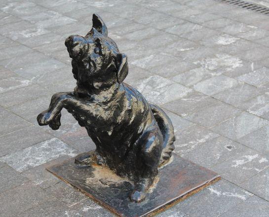 Кошка с книгой и лебединая верность: каких животных и за что увековечили в Нижнем Новгороде - фото 30