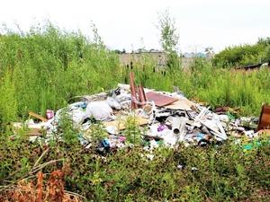 Строительную компанию «Инвестсити» накажут за свалку в Кузнечихе