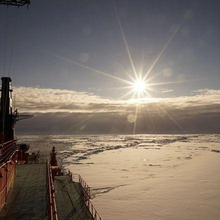 Нижегородцы предложили экс-мэру Владимиру Панову разместить «умные остановки» в Арктике - фото 2