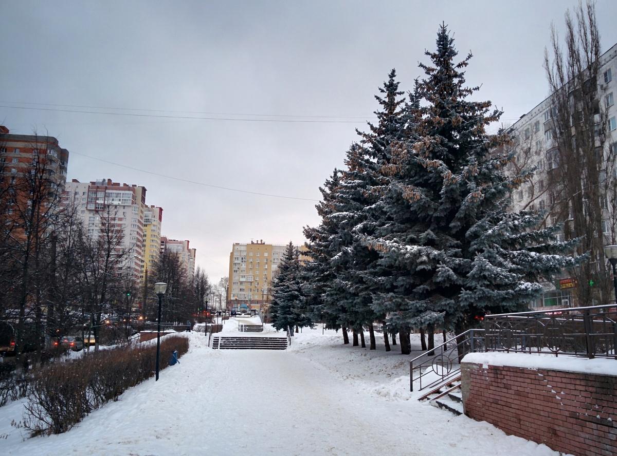 Администрация Советского района пообещала украсить улицу Рокоссовского к следующему Новому году - фото 1