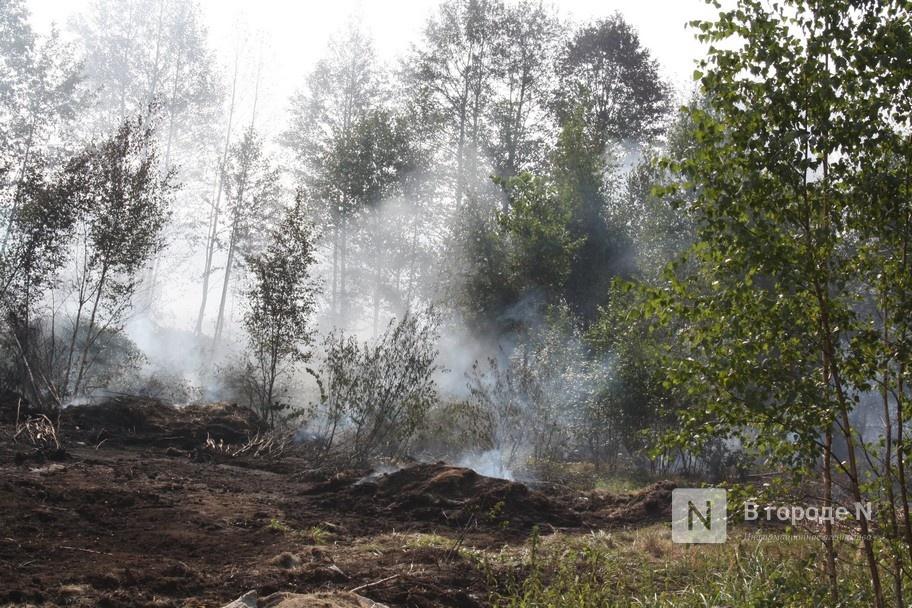 Высокая пожароопасность лесов сохранится в Нижегородской области до 15 июля - фото 1
