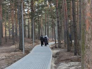 Свадебная беседка и мостки для кормления птиц появятся на Утином озере в Дзержинске