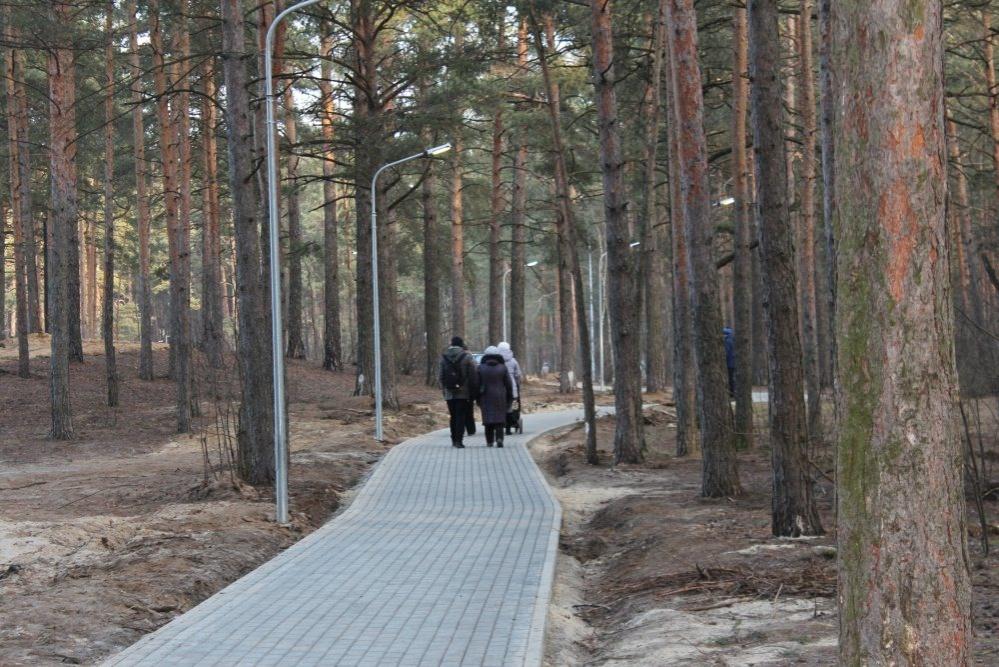 Свадебная беседка и мостки для кормления птиц появятся на Утином озере в Дзержинске - фото 1