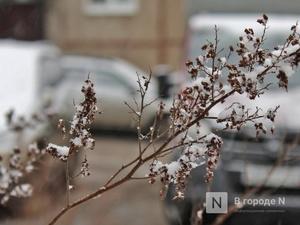 Снег выпал в Нижнем Новгороде в последний день марта