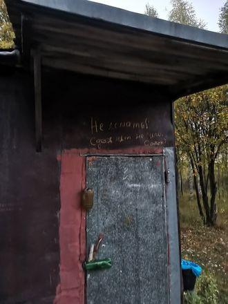Поляну с повешенными ростовыми куклами нашли грибники в арзамасском лесу - фото 2