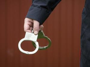 Нижегородец предстанет перед судом за покушение на изнасилование малолетних девочек