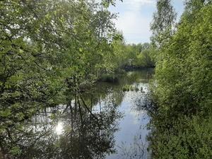 Гидротехнический тоннель на реке Ржавке требует срочного капремонта