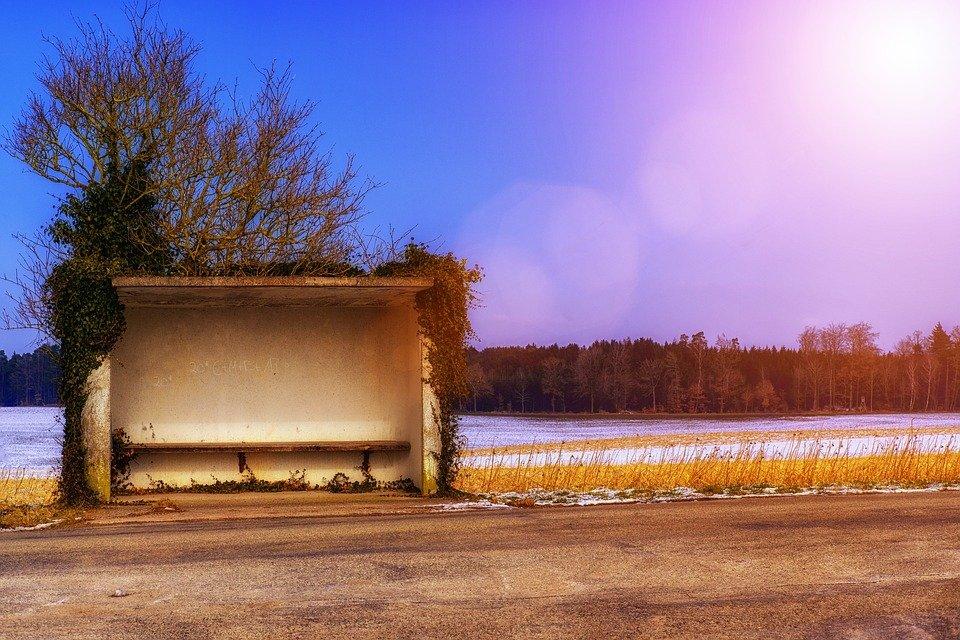 Девять остановок закроют на трассе М7 в Нижегородской области - фото 1
