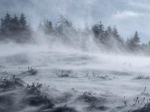 Порывы ветра до 22 м/с и мокрый снег ожидаются в Нижегородской области 19 декабря
